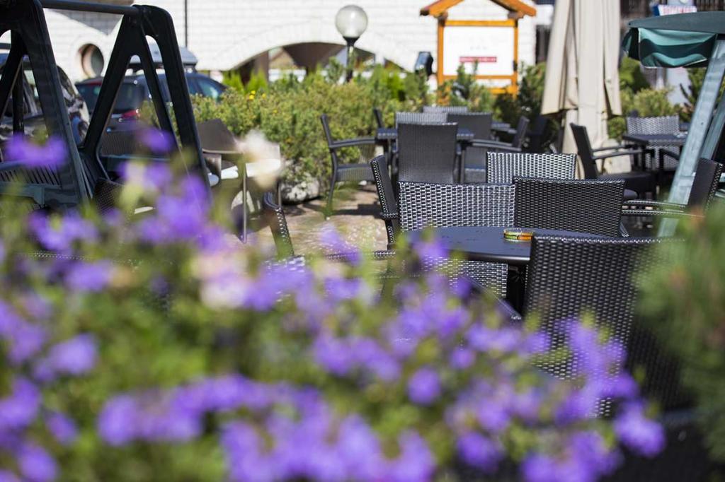 hotel-stella-alpina-andalo-hotel-con-terrazza-relax-e-giardino