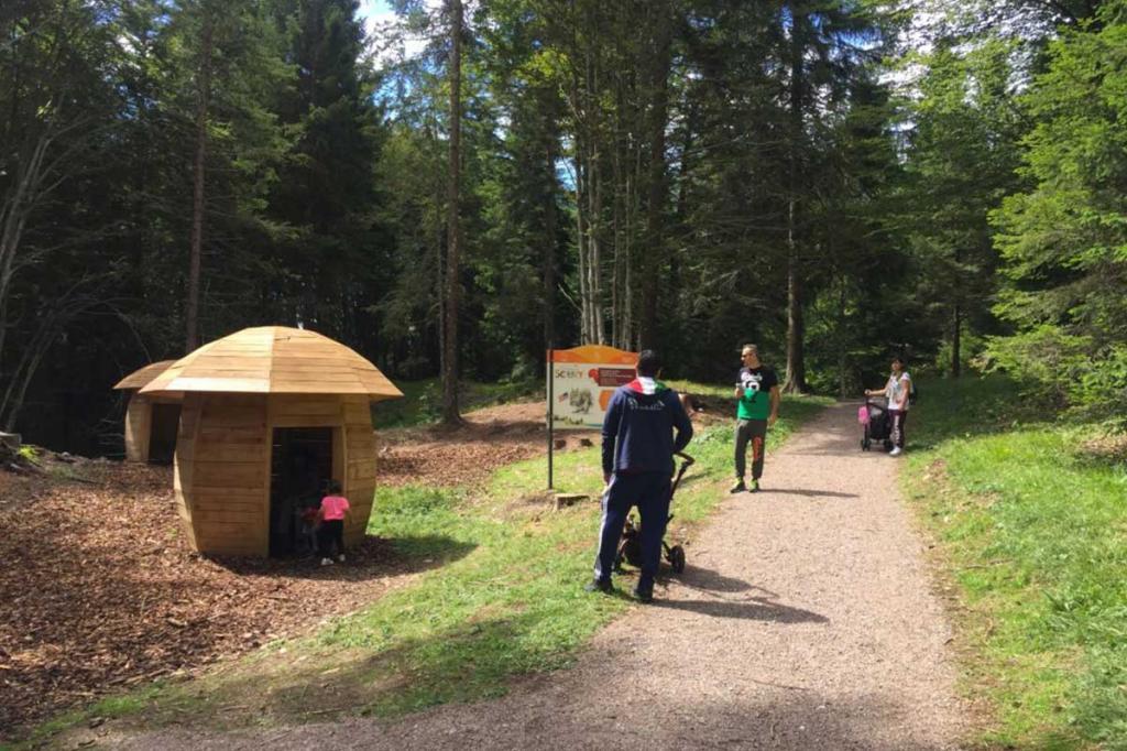 sentiero-didattico-sciury vacanza-per-bambini-in-montagna Hotel-Stella-Alpina-Andalo-Trentino1