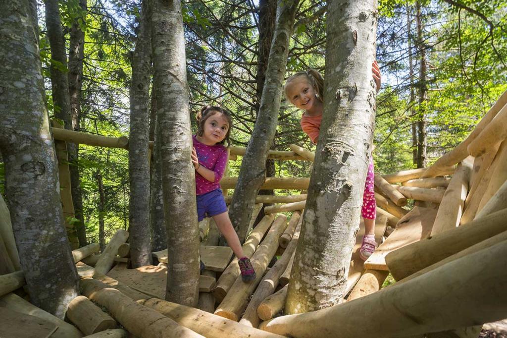 sentiero-didattico-sciury vacanza-per-bambini-in-montagna Hotel-Stella-Alpina-Andalo-Trentino4