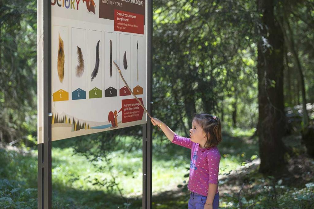 sentiero-didattico-sciury vacanza-per-bambini-in-montagna Hotel-Stella-Alpina-Andalo-Trentino5