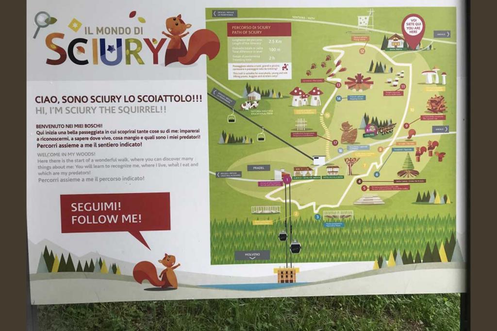 sentiero-didattico-sciury vacanza-per-bambini-in-montagna Hotel-Stella-Alpina-Andalo-Trentino8